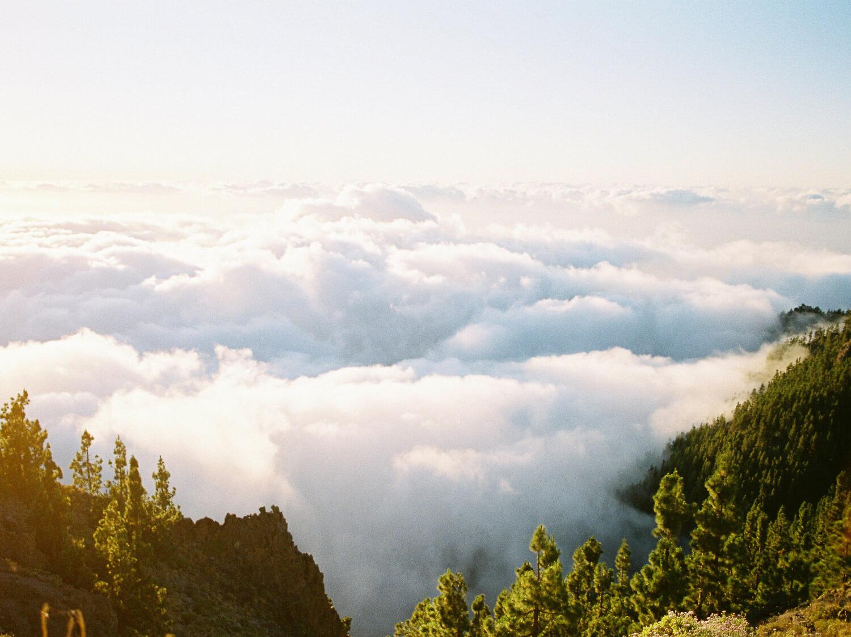 above the clouds fuji400h